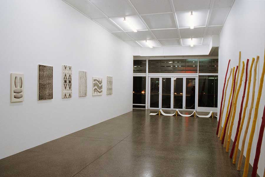 Installation view, Michael Lett, Auckland, 2004.