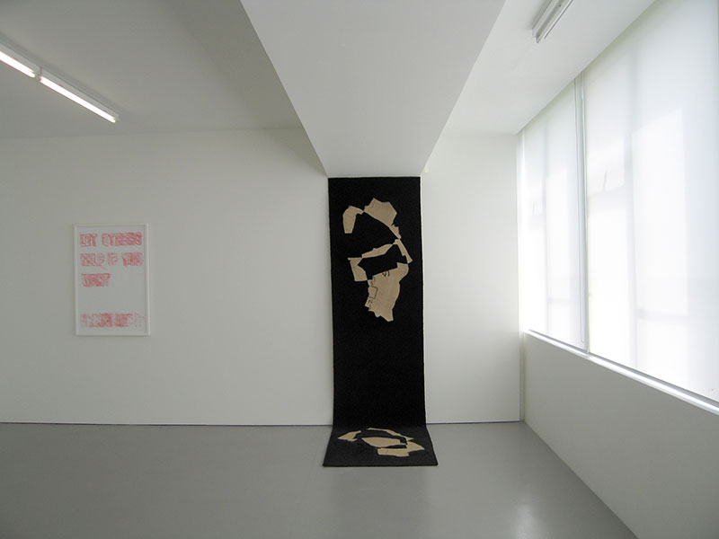 Installation view, Drawing, Anne-Marie May, Rose Nolan. Hamish McKay Gallery, 2012
