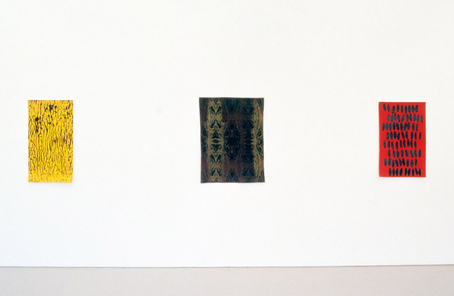 Installation view, Sarah Cottier Gallery, Sydney, 2002